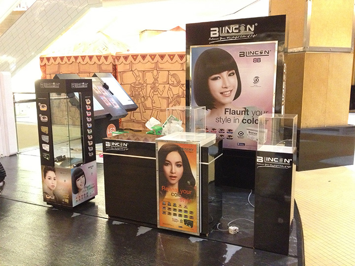 Blincon Roadshow